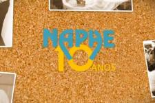 NAPHE 10 ANOS